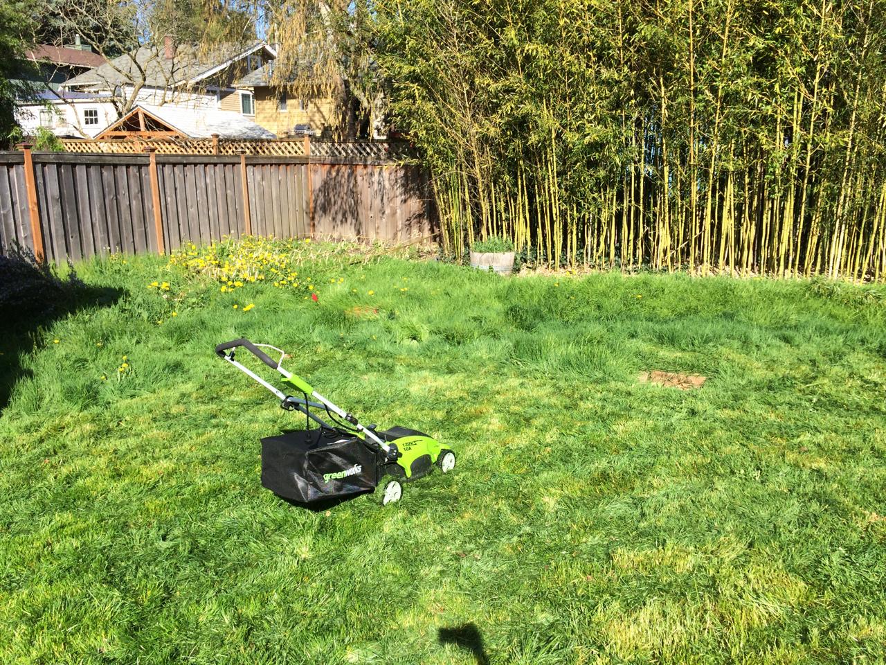 lawns jen mylo on hiatus