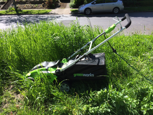 The best lawn mower in the tall grass that was its greatest challenge.